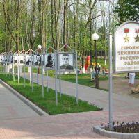 Вход в городской парк, Толочин