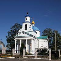 церковь Спасо-Преображенская, Чашники