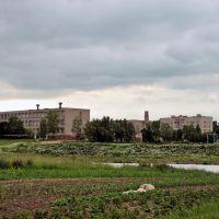 School №1, Шарковщина