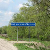 Буда-Кошелевский район, Большевик