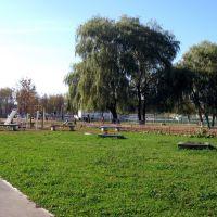 школьный двор, Брагин