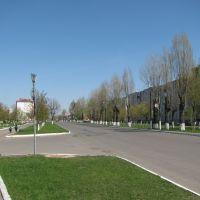 Буда-Кошелево Район автостанции, Буда-Кошелево