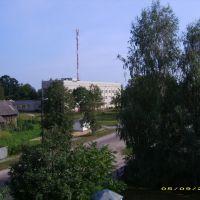 3396, Василевичи