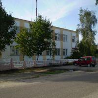 3398, Василевичи