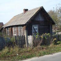 Закинута хатина, Василевичи