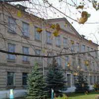 Школа, Василевичи