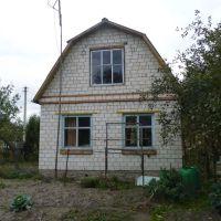 Дачный домик., Васильевка