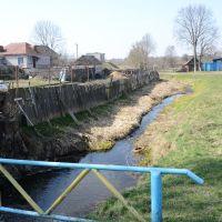 Ручей A creek, Ветка