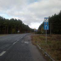 дорога Ветка-Светилови, Ветка