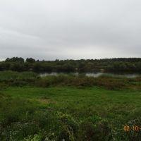 Ветка, река Сож - 2.10.2012, Ветка