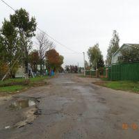 Ветка - 2.10.2012, Ветка