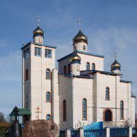 Спасопреображенская церковь, Ветка