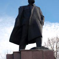 Памятник, Ветка
