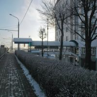 Мост, Гомель