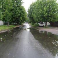 Речицкая улица, Гомель