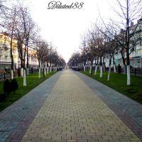 The pedestrian alley on the Avenue of Victory ... Пешаходная алея па праспекце Перамогі, Гомель