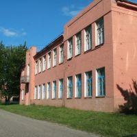 """Антоновка"". 2007 год, Добруш"