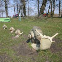 cмаўжы/snails, Добруш