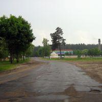 М-н Сосновый, возле ветлечебницы, Житковичи