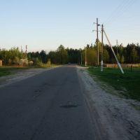Дорога в Сельхозтехнику, Житковичи