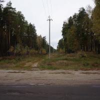 ЛЭП над дорогой, Житковичи