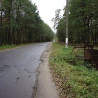 Шлюз у дороги, Житковичи
