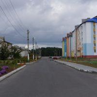 ул. Коцюбинского, Житковичи