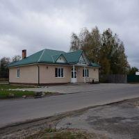 Белые росы, Житковичи