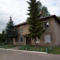 Small house, Жлобин