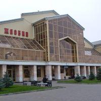 Беларусь: обл.Гомелевская: Жлобин: ж/д вокзал; 15:46 01.11.2008, Жлобин