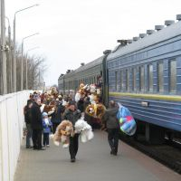 Zhlobins rail station.The sale of soft toys to train passangers, Жлобин