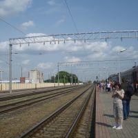 Станция Жлобин, Жлобин
