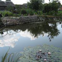 Озеро в саду им. Александра Кобзаря, Калинковичи