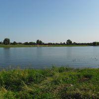 озеро в парке, Калинковичи