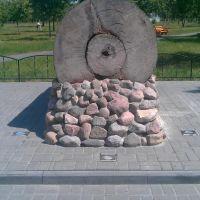 Вековой дуб, Калинковичи