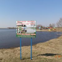 Корма, озеро Сырское, Корма