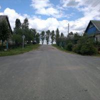 ул. Королёва, Корма, Корма