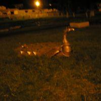 птица-клумба в Лоевском парке)), Лоев