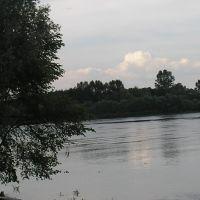 Вид на Днепр, Лоев