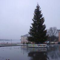 Новогодняя ёлка в Лоеве., Лоев