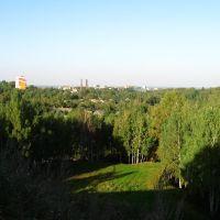 рельефы города, Мозырь