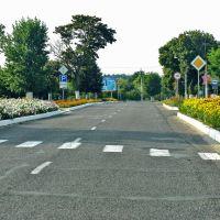 Наровля, цветущий город, 70 км от г.Прияти, Наровля