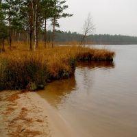 Озеро Скачальское, Октябрьский