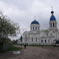 церква Св. Миколая в Петрикові, Октябрьский