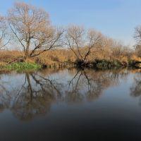 Река Птичь, Октябрьский