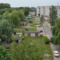 Вид на Петриков с крыши дома, Петриков