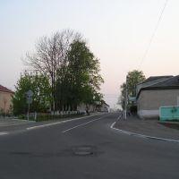 Ленинская улица, Петриков
