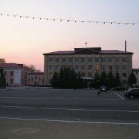 Райисполком, Петриков