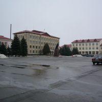 Площадь администрации, Петриков