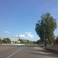 улица Пушкина, Петриков